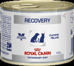 Royal Canin Recovery - återhämtning, våtfoder burkar, à 195 g