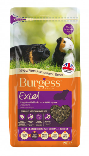 Burgess Excel Marsvinsfoder Svarta vinbär, Oregano 2 kg