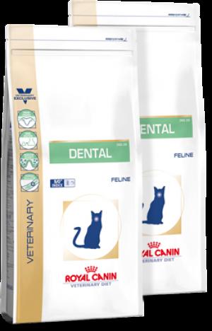 Royal Canin Dental DSO29 Feline