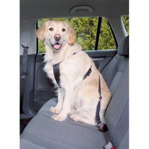 sikkerhedssele hund